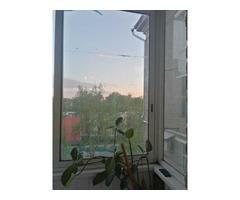 сдаю комнату в центре Москвы